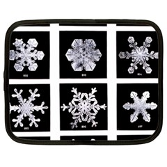 Snowflakes Exemplifies Emergence In A Physical System Netbook Case (xxl)