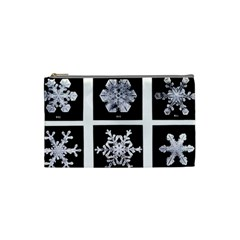 Snowflakes Exemplifies Emergence In A Physical System Cosmetic Bag (small)
