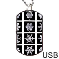 Snowflakes Exemplifies Emergence In A Physical System Dog Tag Usb Flash (one Side)