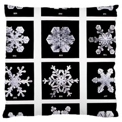 Snowflakes Exemplifies Emergence In A Physical System Large Cushion Case (one Side)