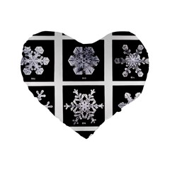 Snowflakes Exemplifies Emergence In A Physical System Standard 16  Premium Heart Shape Cushions