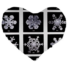 Snowflakes Exemplifies Emergence In A Physical System Large 19  Premium Heart Shape Cushions