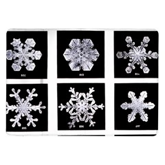 Snowflakes Exemplifies Emergence In A Physical System Samsung Galaxy Tab 10 1  P7500 Flip Case