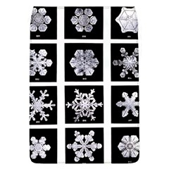 Snowflakes Exemplifies Emergence In A Physical System Flap Covers (l)