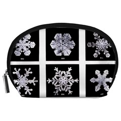 Snowflakes Exemplifies Emergence In A Physical System Accessory Pouches (large)
