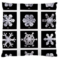 Snowflakes Exemplifies Emergence In A Physical System Standard Flano Cushion Case (one Side)
