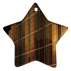 Swisstech Convention Center Star Ornament (two Sides)