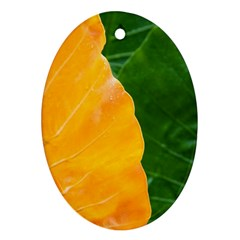 Wet Yellow And Green Leaves Abstract Pattern Ornament (Oval)