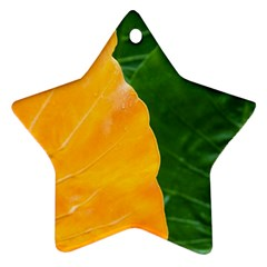 Wet Yellow And Green Leaves Abstract Pattern Ornament (star)