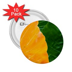 Wet Yellow And Green Leaves Abstract Pattern 2 25  Buttons (10 Pack)
