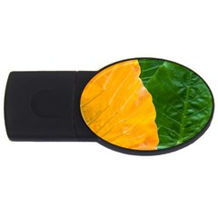 Wet Yellow And Green Leaves Abstract Pattern Usb Flash Drive Oval (2 Gb)