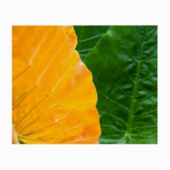 Wet Yellow And Green Leaves Abstract Pattern Small Glasses Cloth