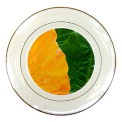 Wet Yellow And Green Leaves Abstract Pattern Porcelain Plates