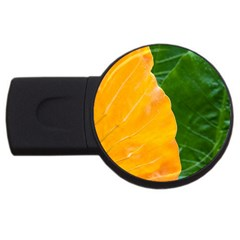 Wet Yellow And Green Leaves Abstract Pattern USB Flash Drive Round (4 GB)