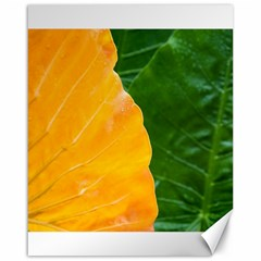 Wet Yellow And Green Leaves Abstract Pattern Canvas 16  X 20