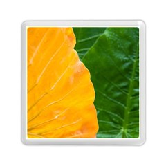 Wet Yellow And Green Leaves Abstract Pattern Memory Card Reader (square)
