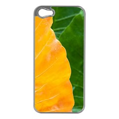 Wet Yellow And Green Leaves Abstract Pattern Apple Iphone 5 Case (silver)