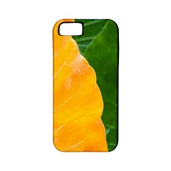 Wet Yellow And Green Leaves Abstract Pattern Apple Iphone 5 Classic Hardshell Case (pc+silicone)