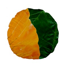 Wet Yellow And Green Leaves Abstract Pattern Standard 15  Premium Flano Round Cushions