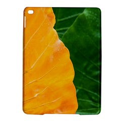 Wet Yellow And Green Leaves Abstract Pattern Ipad Air 2 Hardshell Cases
