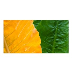 Wet Yellow And Green Leaves Abstract Pattern Satin Shawl