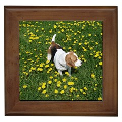 Beagle In Dandilions Framed Tiles