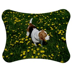 Beagle In Dandilions Jigsaw Puzzle Photo Stand (Bow)