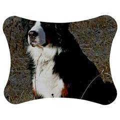 Bernese Mountain Dog Sitting Jigsaw Puzzle Photo Stand (Bow)