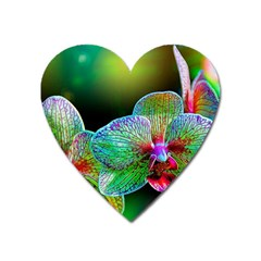 Alien Orchids Floral Art Photograph Heart Magnet