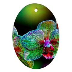 Alien Orchids Floral Art Photograph Oval Ornament (two Sides)