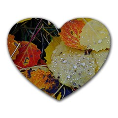Autumn Rain Yellow Leaves Heart Mousepads