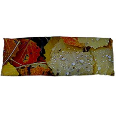 Autumn Rain Yellow Leaves Body Pillow Case Dakimakura (two Sides)