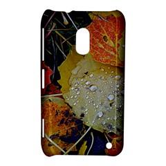 Autumn Rain Yellow Leaves Nokia Lumia 620