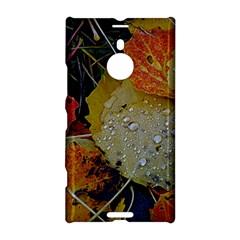 Autumn Rain Yellow Leaves Nokia Lumia 1520