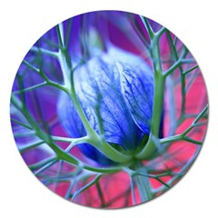 Blue Flowers With Thorns Magnet 5  (round)