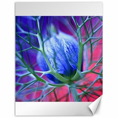 Blue Flowers With Thorns Canvas 12  X 16