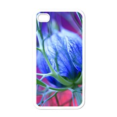 Blue Flowers With Thorns Apple Iphone 4 Case (white)