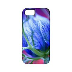 Blue Flowers With Thorns Apple Iphone 5 Classic Hardshell Case (pc+silicone)