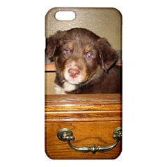 Border Collie Puppy In Drawr iPhone 6 Plus/6S Plus TPU Case