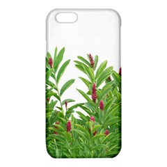 Tropical Floral Print iPhone 6/6S TPU Case