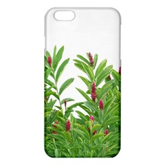 Tropical Floral Print iPhone 6 Plus/6S Plus TPU Case