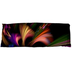 Color Burst Abstract Body Pillow Case Dakimakura (two Sides)
