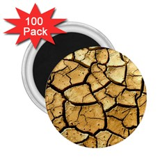 Dry Ground 2 25  Magnets (100 Pack)