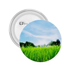 Green Landscape Green Grass Close Up Blue Sky And White Clouds 2 25  Buttons