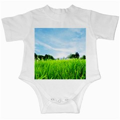 Green Landscape Green Grass Close Up Blue Sky And White Clouds Infant Creepers