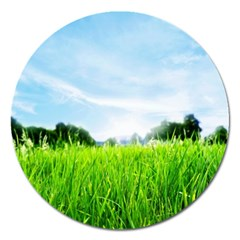 Green Landscape Green Grass Close Up Blue Sky And White Clouds Magnet 5  (round)