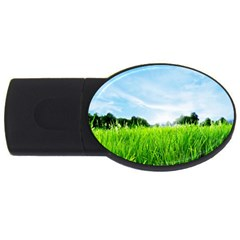 Green Landscape Green Grass Close Up Blue Sky And White Clouds Usb Flash Drive Oval (4 Gb)
