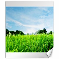 Green Landscape Green Grass Close Up Blue Sky And White Clouds Canvas 8  X 10