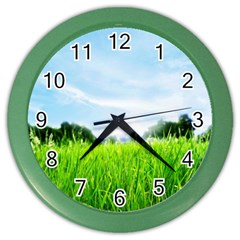 Green Landscape Green Grass Close Up Blue Sky And White Clouds Color Wall Clocks