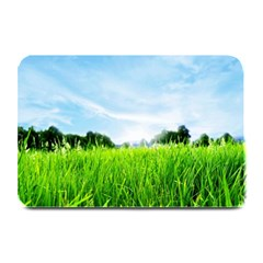 Green Landscape Green Grass Close Up Blue Sky And White Clouds Plate Mats